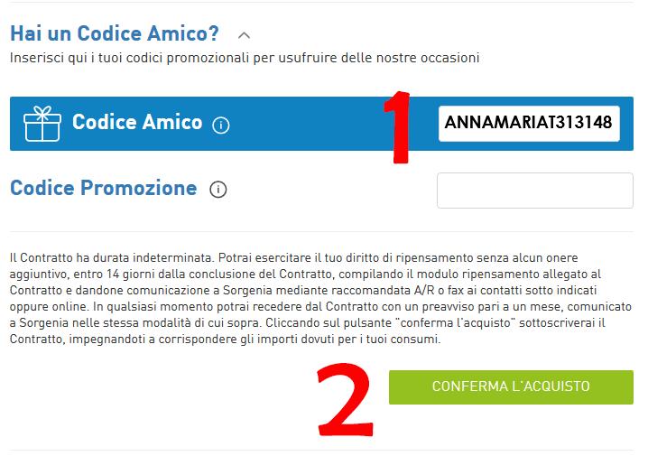 codice-amico-sorgenia-dove-inserire-annamaria